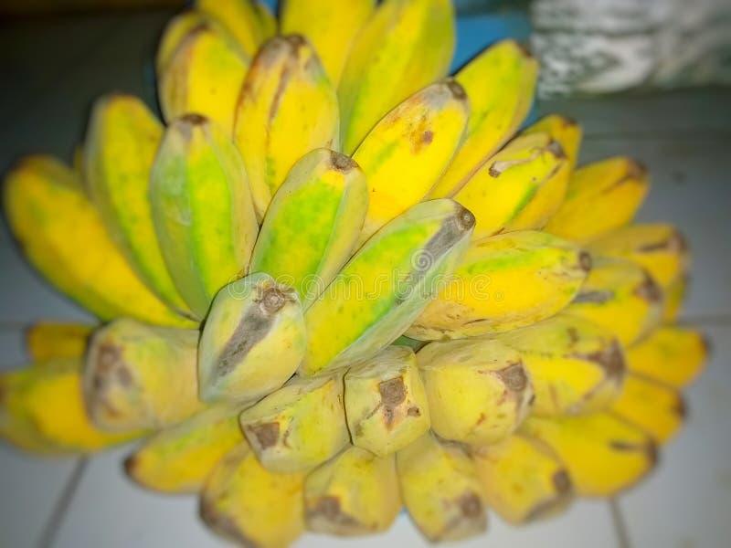 Банан Kepok стоковые изображения rf