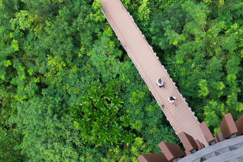 БАНГКОК, ТАИЛАНД - 7-ое октября 2017: Туристы и посетители наслаждаясь прогулкой на мосте пешеходной дорожки прогулки неба во взг стоковое изображение rf