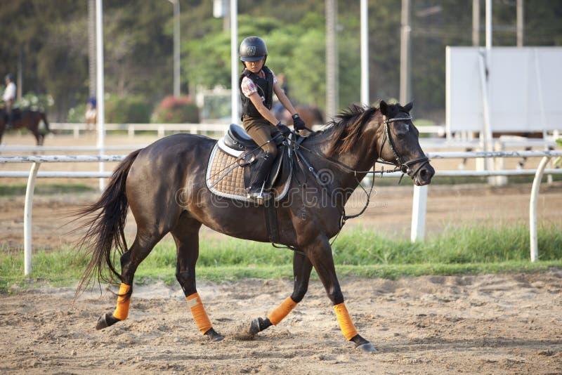 БАНГКОК ТАИЛАНД - 27-ОЕ ФЕВРАЛЯ: неопознанная практика мальчика к ехать лошадь в поле 27-ого февраля 2013 Бангкоке школы лошади th стоковые изображения