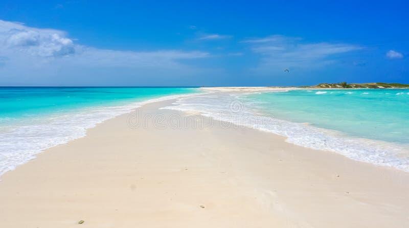 Банк песка в карибском пляже стоковая фотография rf