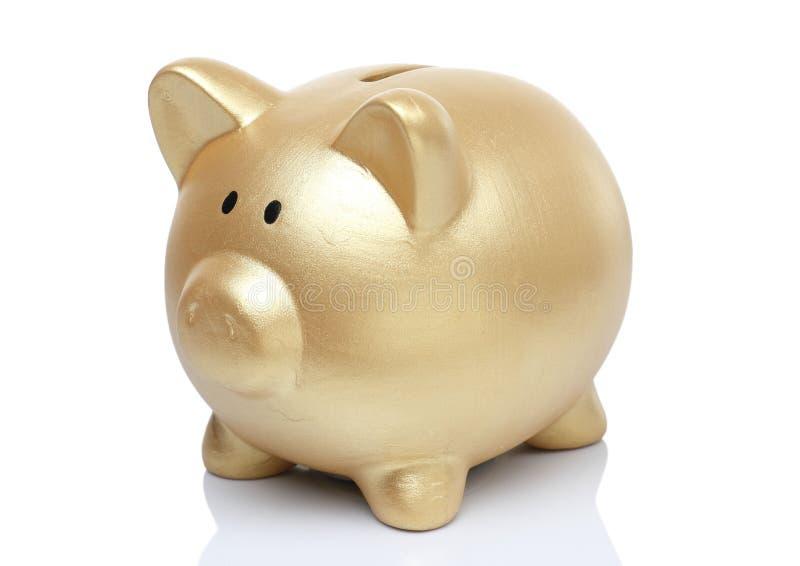 Банк свиньи золота стоковое фото rf