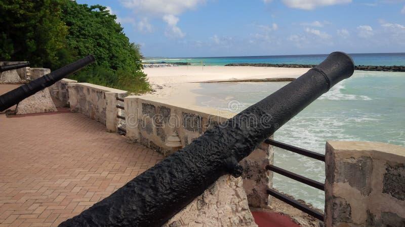 Барбадос, карибская сцена природы стоковые фотографии rf