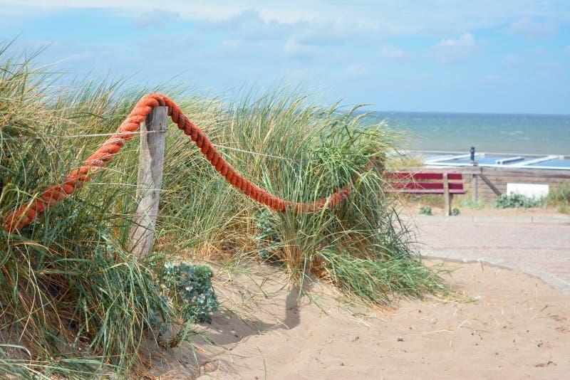 Барьер красной веревочки на деревянных поляках перед травой на пляже песка с океаном в предпосылке стоковые изображения rf