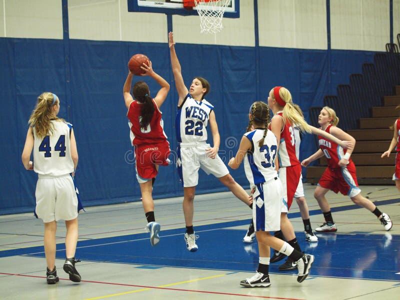 баскетбол действия стоковые фотографии rf