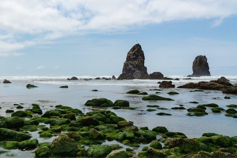 Бассейны охраняемой природной территории утеса стога сена приливные, пляж карамболя, Тихоокеанское побережье, Орегон, США стоковая фотография rf