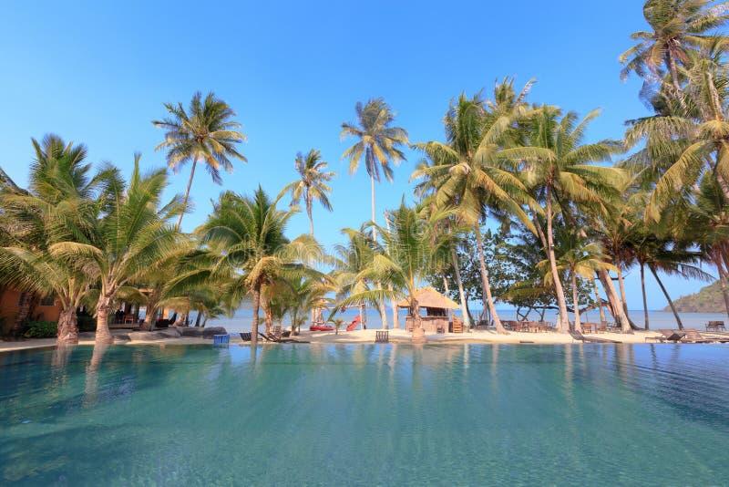 Бассейн и пальма на тропическом пляже - Задняя часть призвания стоковые изображения