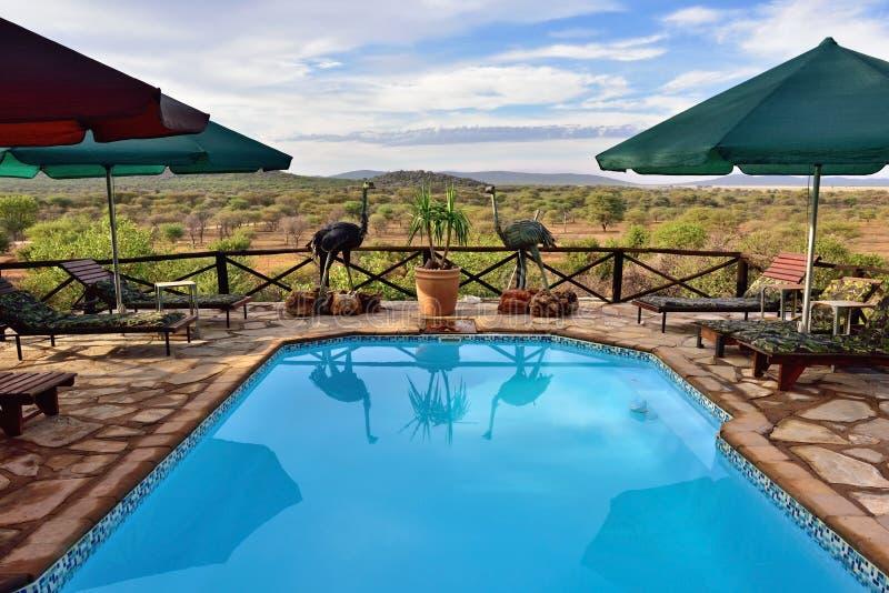 Бассейн, Намибия стоковое фото rf