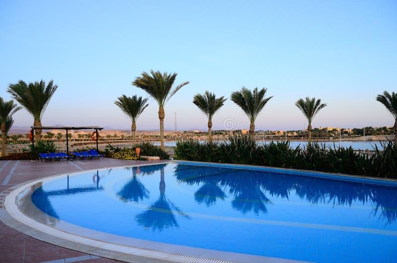 Бассейн на пляже и отражении пальм стоковая фотография