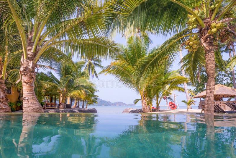 Бассейн, пальмы и пляж перед стоковые изображения