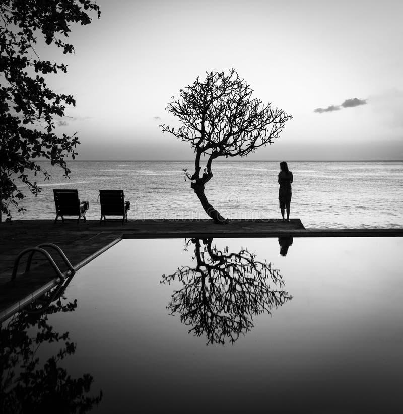 Бассейн, шезлонги, дерево и вид на море - Бали, Индонезия - BW стоковые изображения
