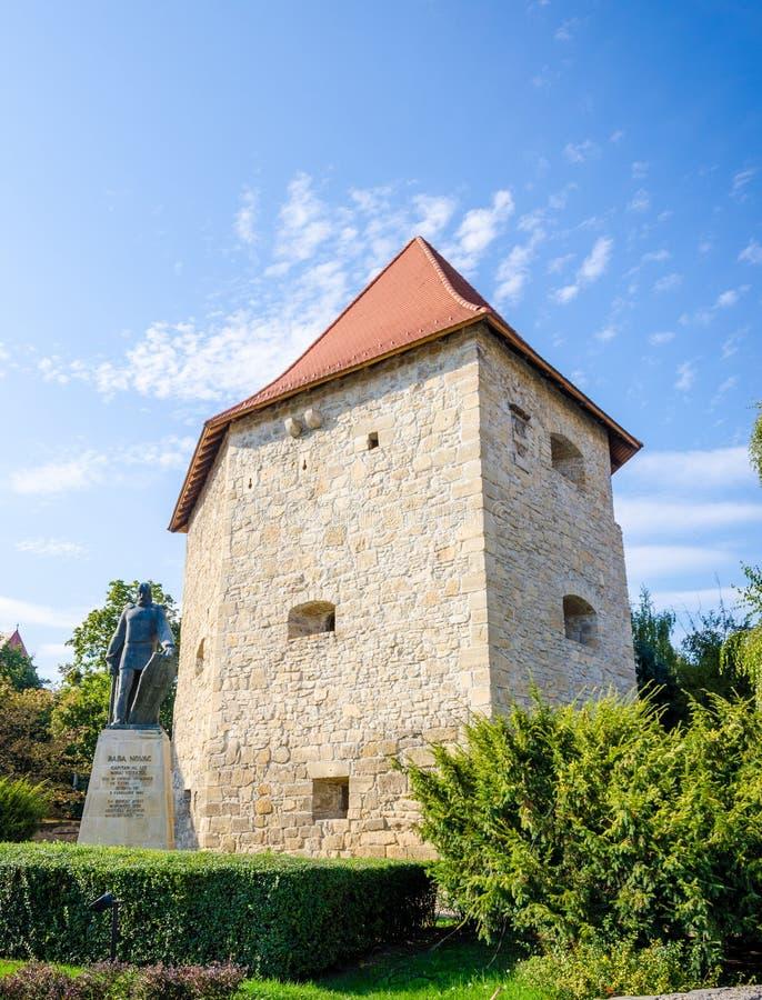 Бастион Тейлора и статуя Novac Бабы в область cluj-Napoca, Трансильвании Румынии стоковые фото