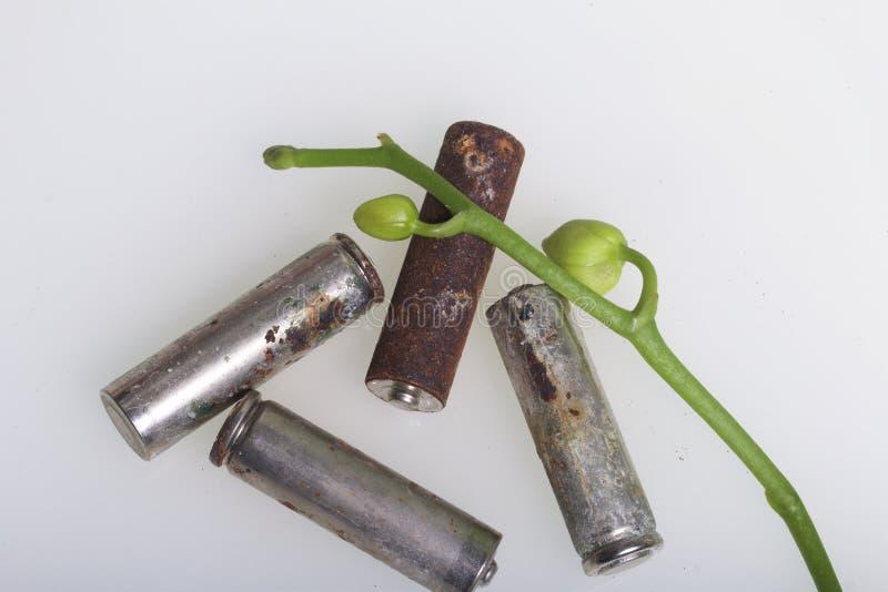 Батареи корозии Они лежат на белой поверхности, предусматриванной с ветвью орхидей с unrevealed бутонами Экологическое protecti стоковые фото