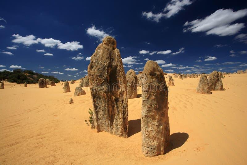 башенкы пустыни Австралии западные стоковое изображение