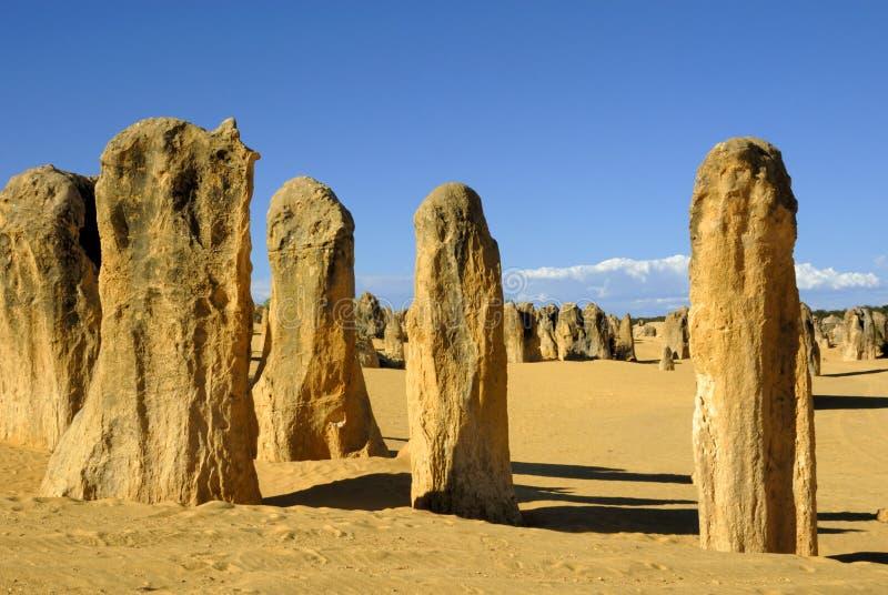 башенкы пустыни стоковые изображения rf