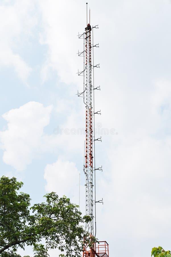 Башни радиосвязей, расположенные в районе леса стоковая фотография rf