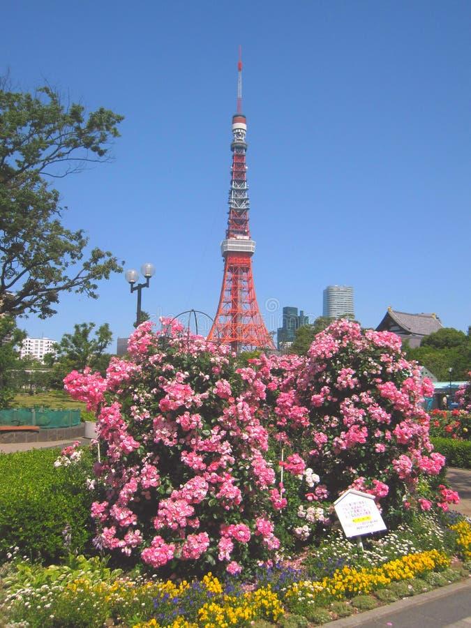Башни токио в Японии стоковое изображение rf