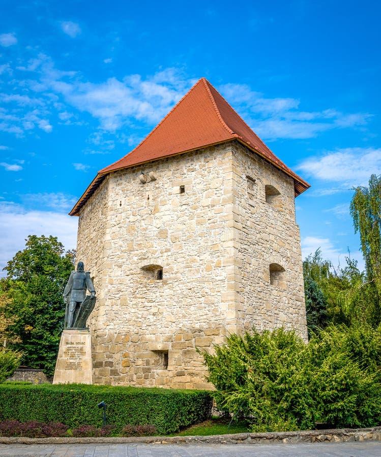 Башня бастиона Taylors и статуя героя румына Novac Бабы стоковое изображение rf