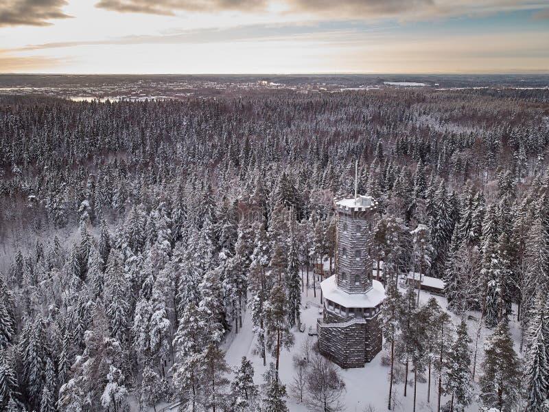 Башня бдительности в ландшафте зимы стоковое фото