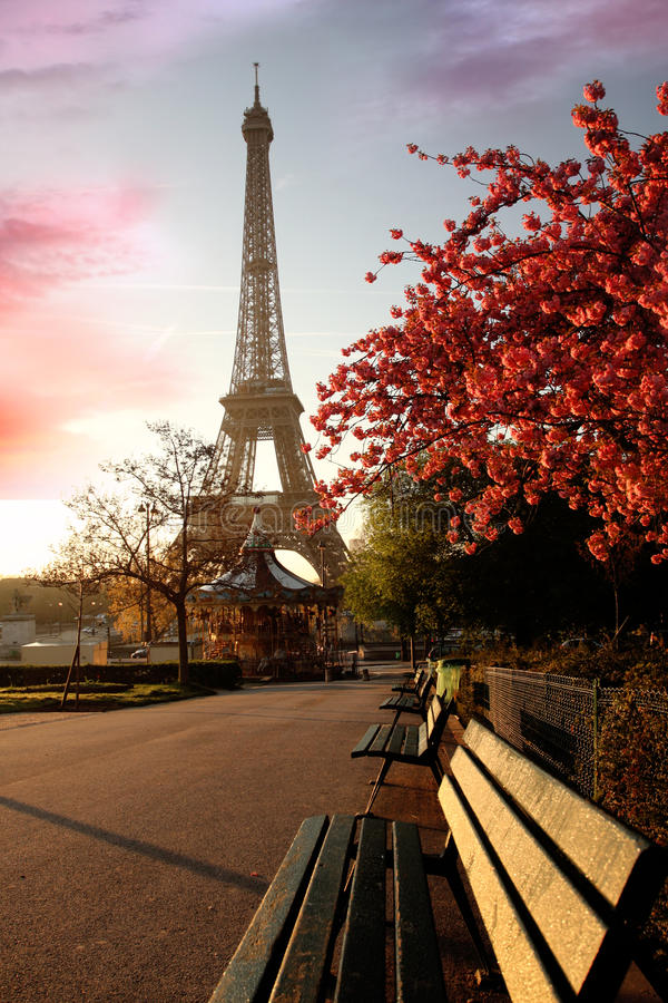 башня весны eiffel Франции paris стоковое фото rf