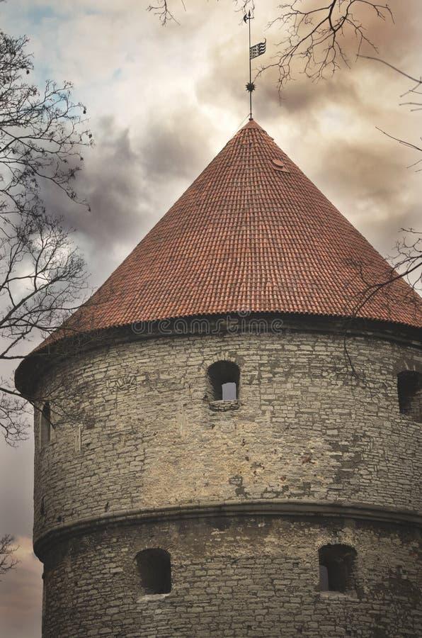 Башня загородки города Таллина, Эстонии стоковое фото