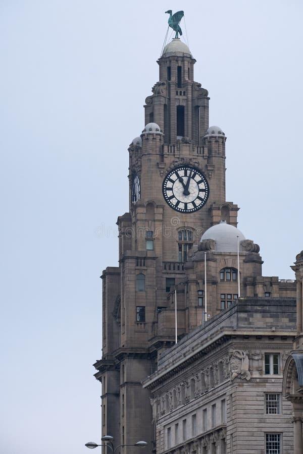 Башня королевского здания печени в Ливерпуле Великобритании стоковое фото rf
