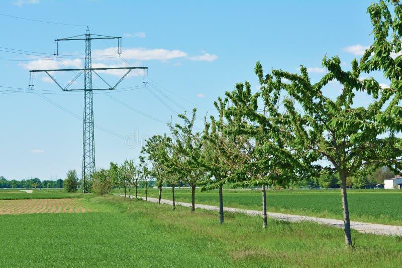 Башня передачи как визуальное загрязнение в сельском ландшафте поля с деревьями и путем стоковое изображение rf