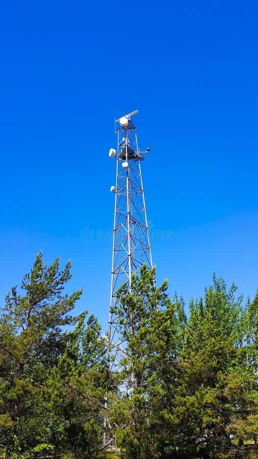 Башня передачи связи микроволны под голубым небом стоковые изображения rf