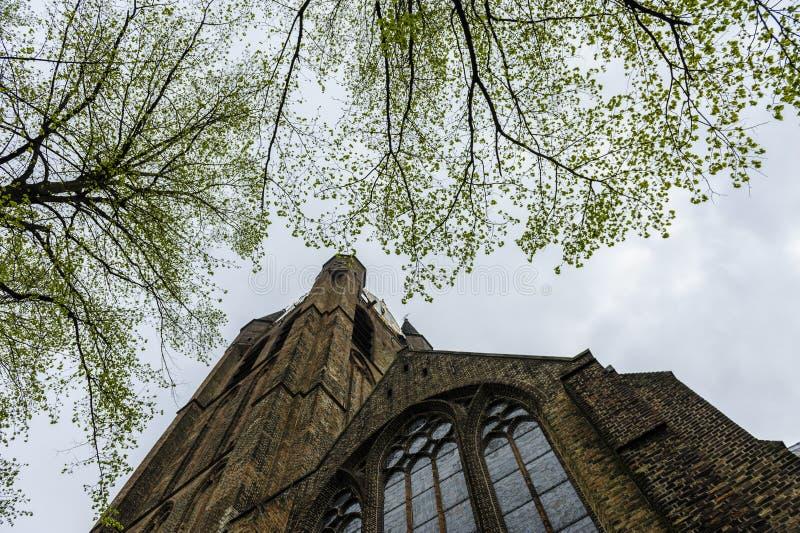 Башня старой церков, Делфта стоковое изображение