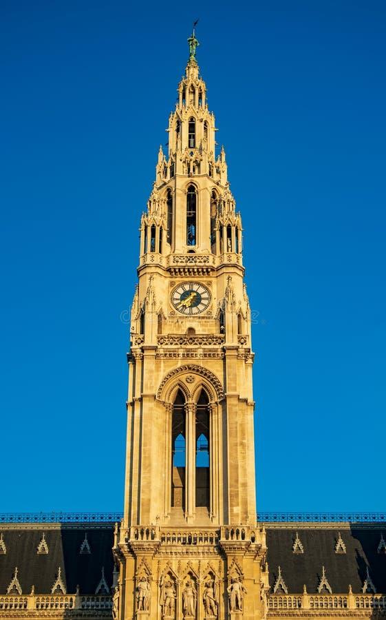 Башня с часами на утре sunlit, Австрия городской ратуши Вены стоковые изображения