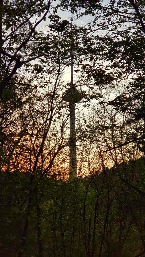 Башня ТВ стоковые изображения rf