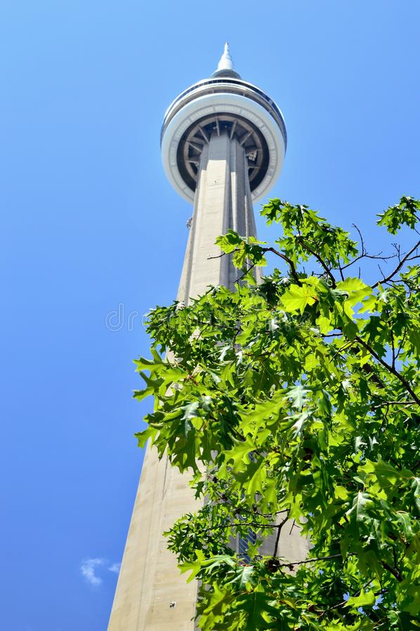 башня cn toronto стоковое фото rf