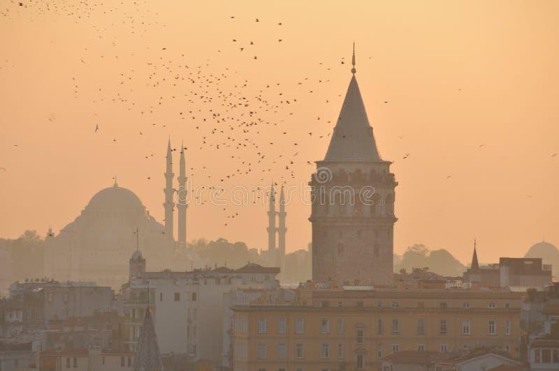 Башня Galata & мечеть Suleymaniye стоковая фотография