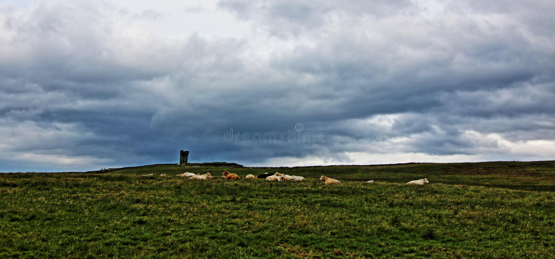 Башня Moher на голове Hags вдоль скал Moher стоковое фото