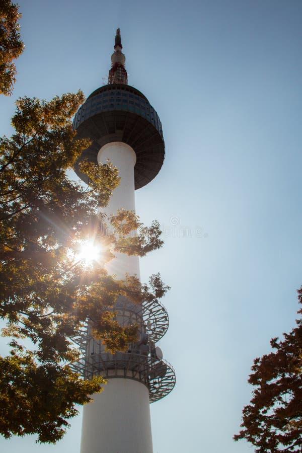 Башня n Сеула стоковое фото