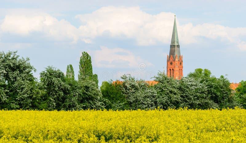 Башня St Martin в Nienburg стоковые изображения rf