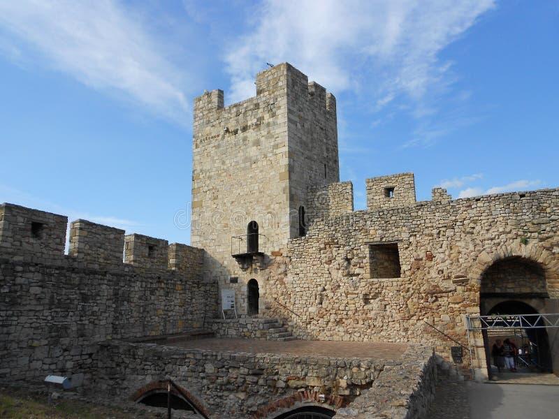 Башня Stefan деспота стоковые изображения rf