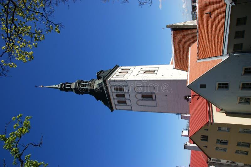 башня tallin nicholas стоковое фото rf