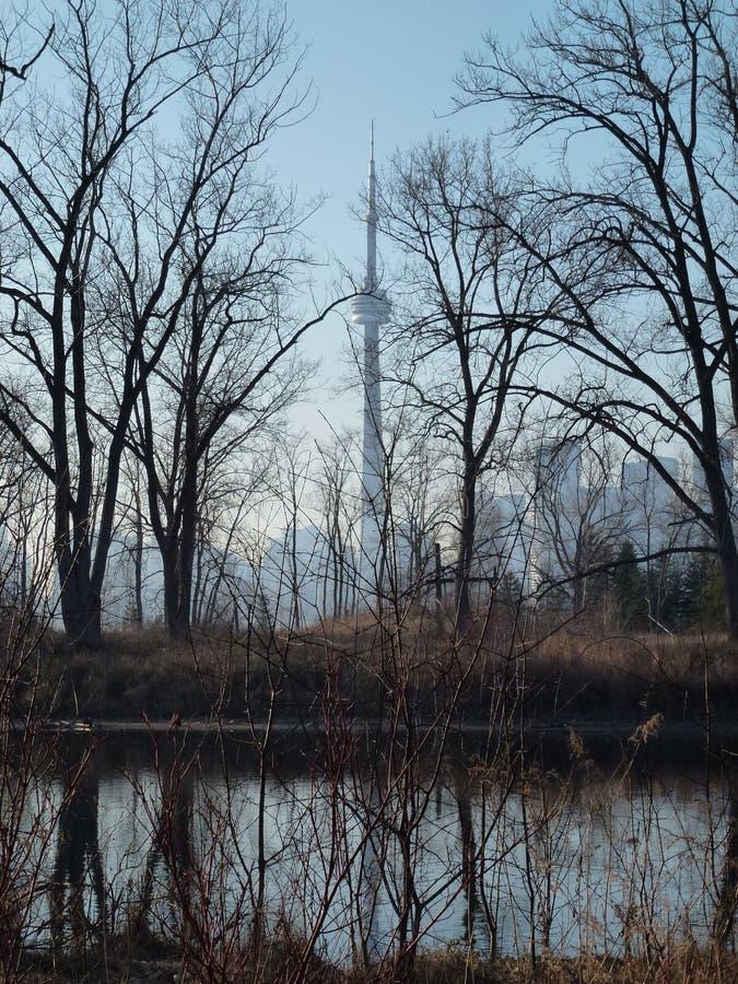 башня toronto горизонта ontario озера cn стоковое изображение rf