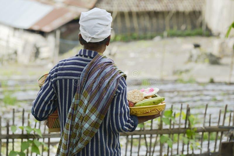 Балийский человек принося традиционный предлагать к индусскому виску стоковые фотографии rf