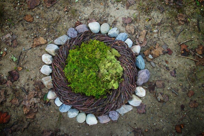 Ба каменной Newborn фотографии мха и природы утесов реки цифровой стоковое фото