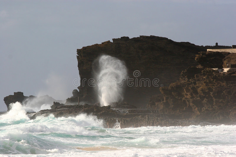 бдительность s halona золоедины пляжа песочная стоковая фотография
