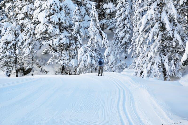 Беговые лыжи в долине Marcadau стоковые фото
