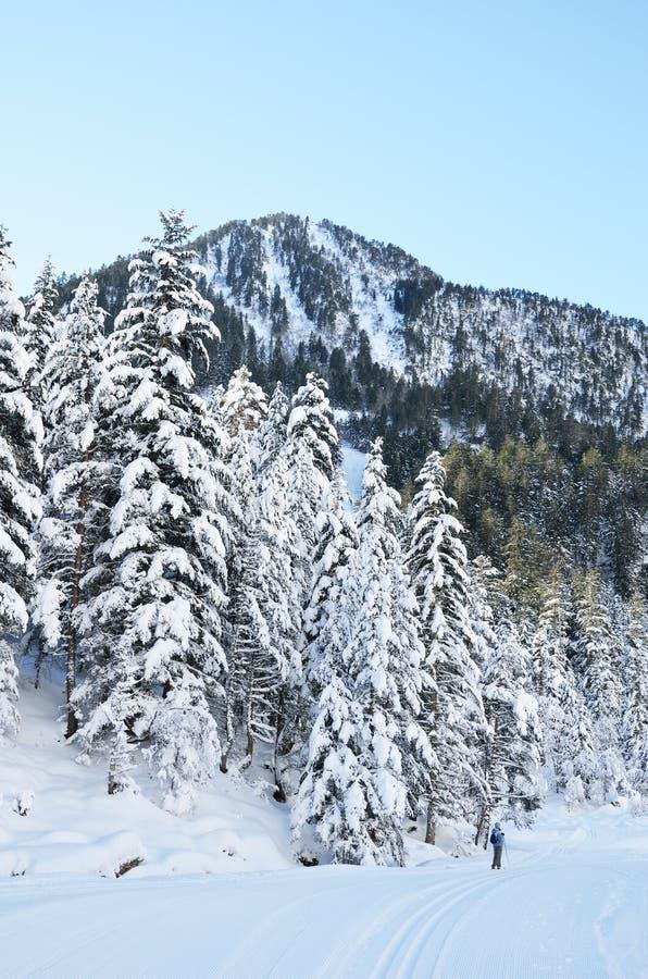 Беговые лыжи в долине Marcadau стоковое изображение rf