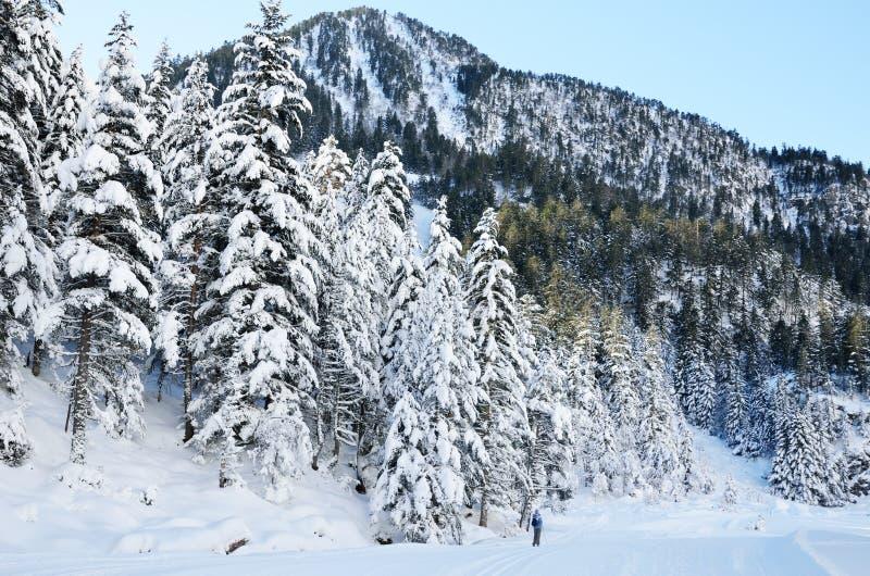 Беговые лыжи в долине Marcadau стоковые фотографии rf
