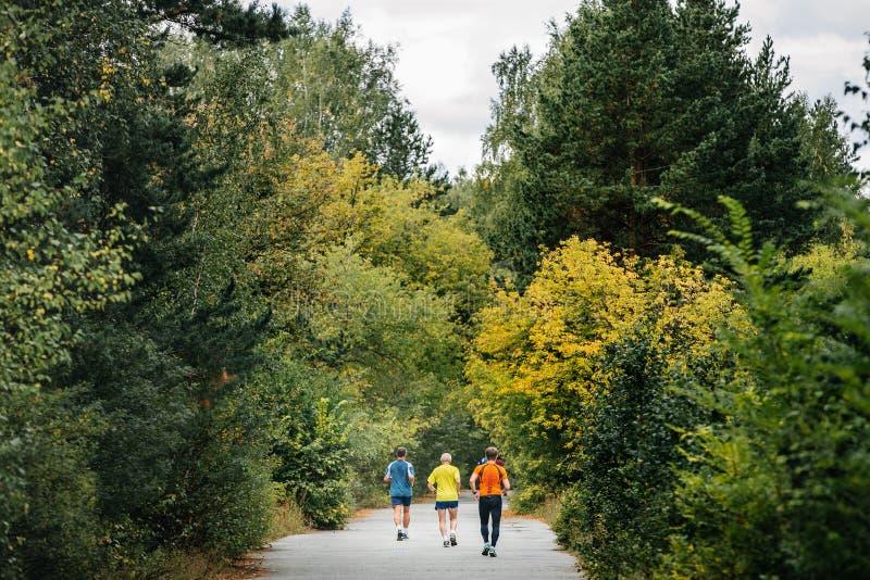 Бегуны задней части 3 бежать в лесе осени стоковое фото rf