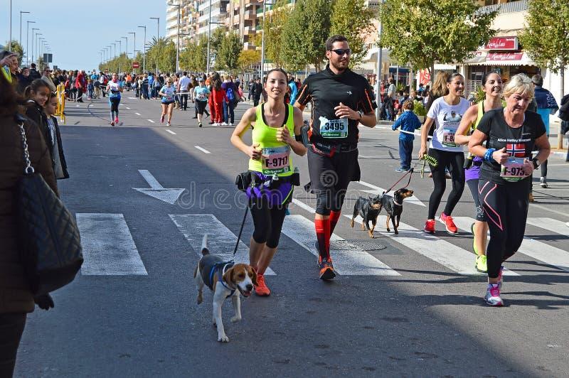 Бегуны с собаками стоковые фотографии rf