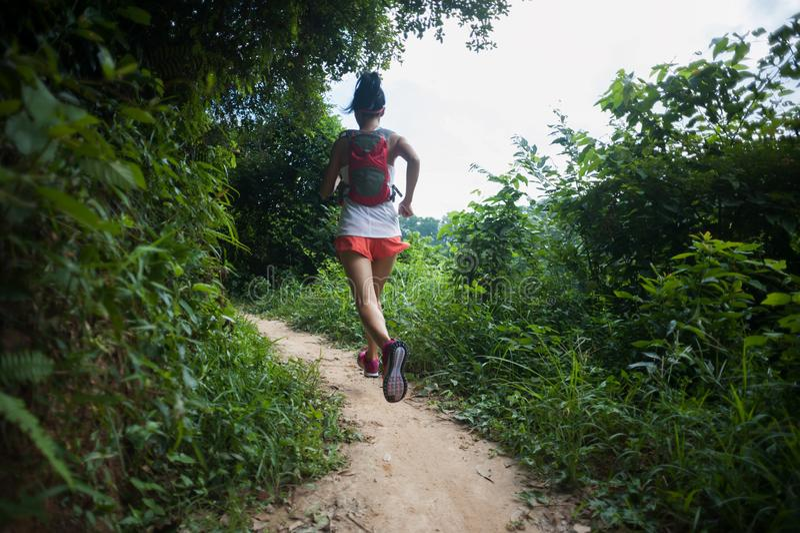 Бегун следа женщины бежать на тропическом следе леса стоковое изображение rf