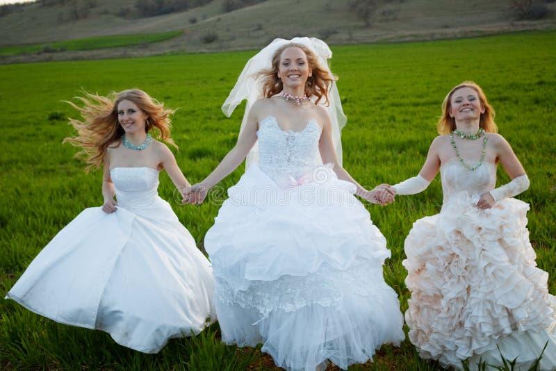 бежать невест стоковое фото rf