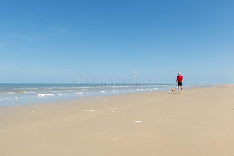 Бежать с собакой на пляже стоковое фото rf