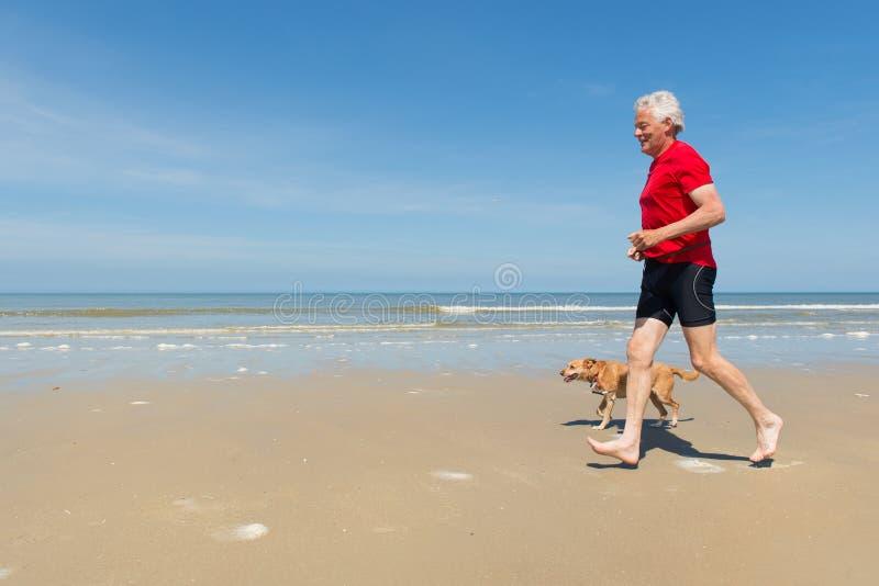 Бежать с собакой на пляже стоковые фото
